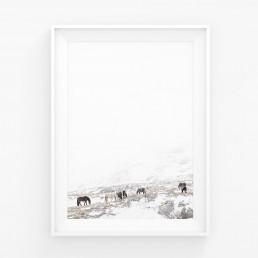 Juliste villihevosia minimalistisessa vuoristomaisemassa