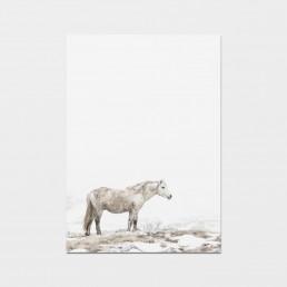 Minimalistinen hevostaulu valkoisesta villihevosesta usvassa